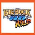 big_buck_logo